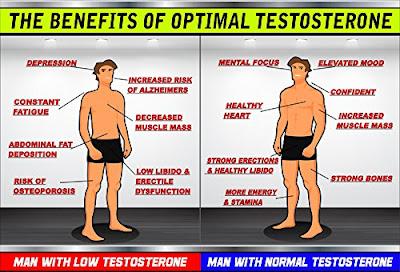 Testosterone (Oltre la Salute Fisica): Analizziamo il Comportamento e la Psicologia di chi ne ha Molto