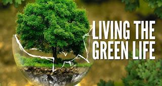 Green Life: Lingkungan Juga Punya Hak Asasi