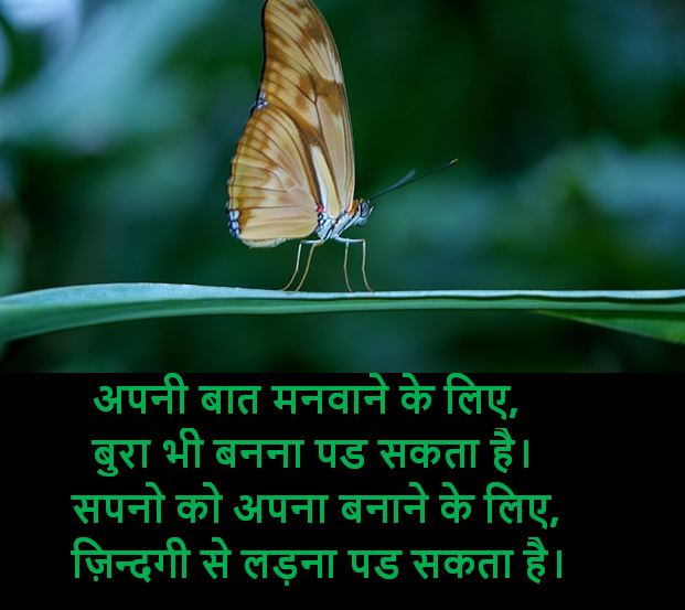 heart touching shayari images, heart touching shayari images download