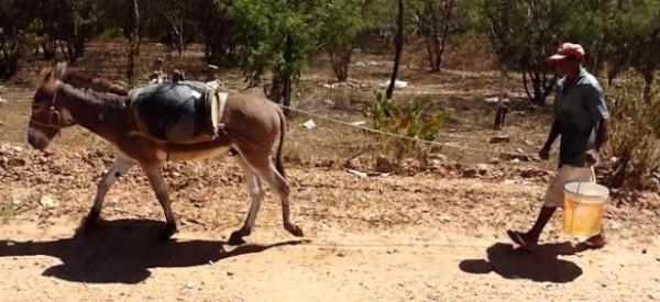 Abastecimento de água nos Vales do Jequitinhonha e Mucuri motiva reunião na ALMG
