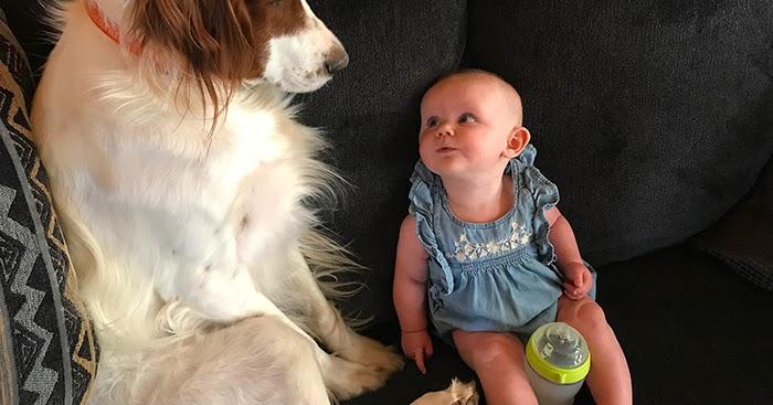 Hattie and The Babysitter
