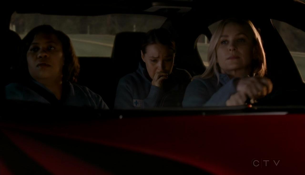 Sin fin de frases: Anatomía de Grey Temporada 13 (Season 13)