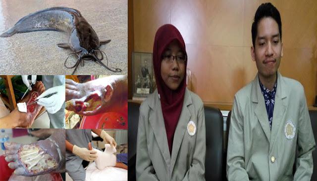 LUAR BIASA …!!! 5 MAHASISWA UGM BIKIN OBAT LUKA PENDERITA DIABETES DARI LENDIR LELE…{{TOLONG SEBARKAN}}