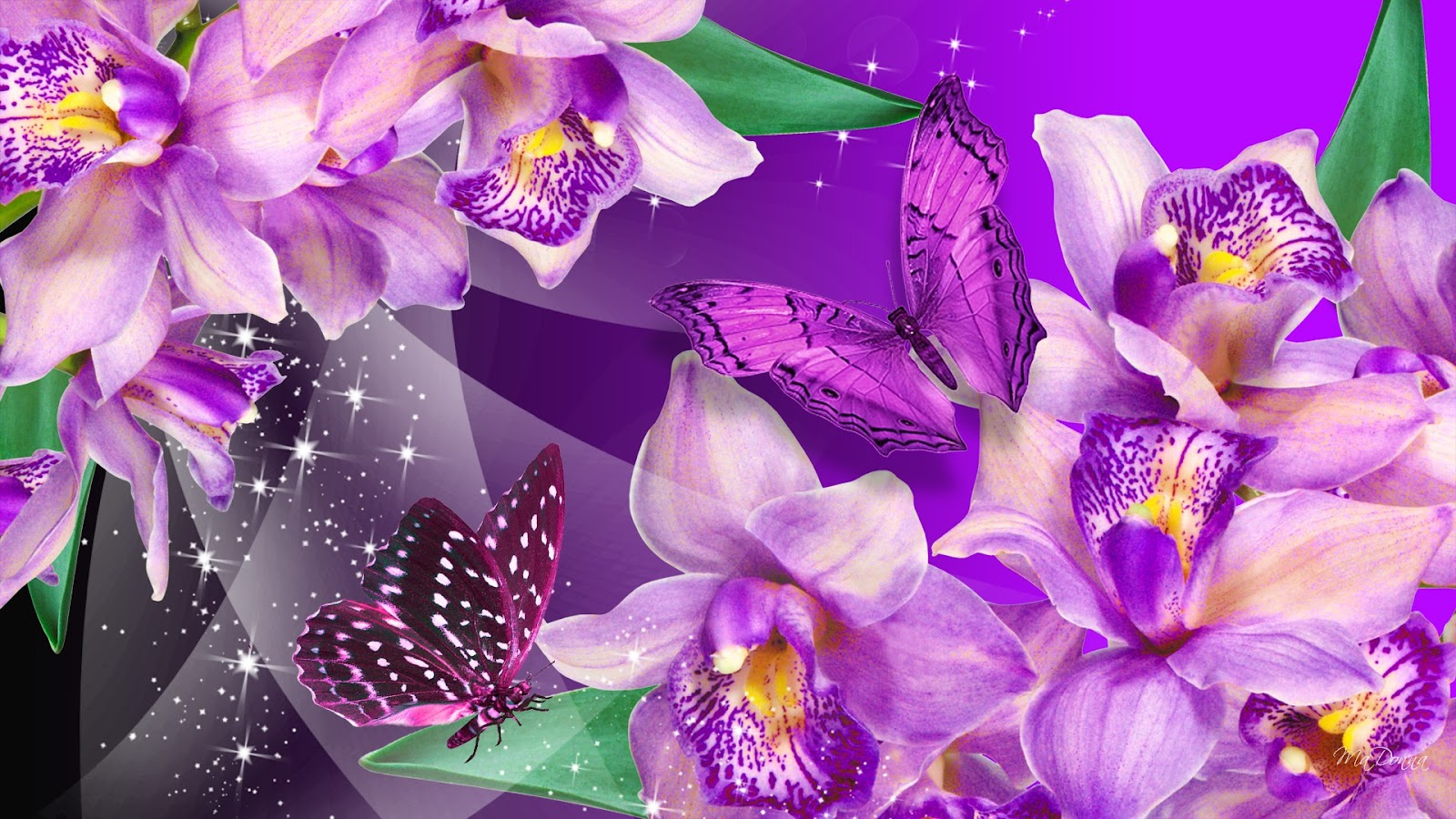 Purple Roses Background Images: HQ DESKTOP WALLPAPERS: January 2013