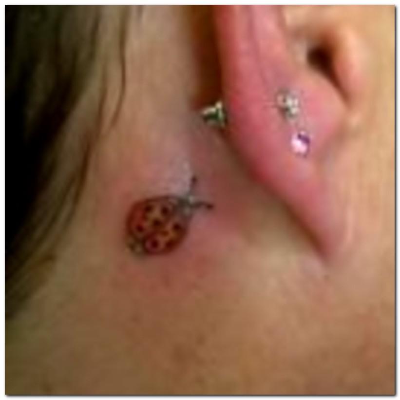 Ladybug Tattoos Designs Ideas And Meaning: Ladybug Tattoos