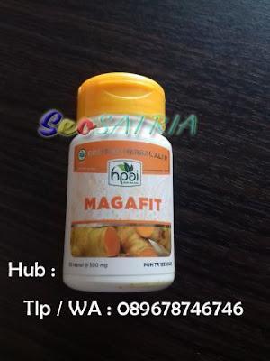 Harga Magafit Hpai - Seo Satria