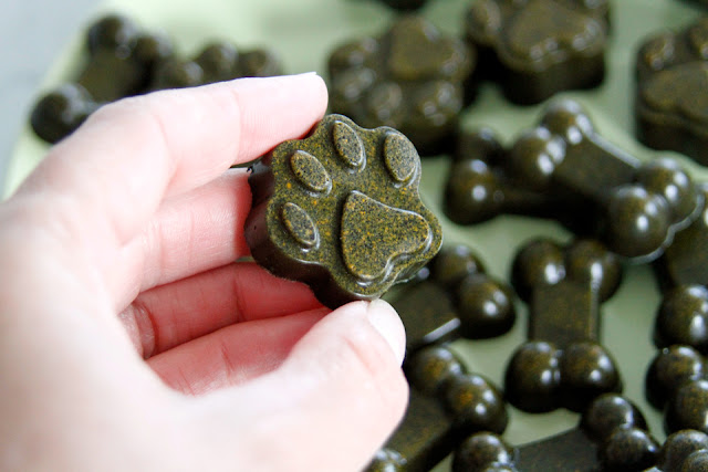 Green and gold gelatin gummy dog treats