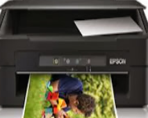 Epson XP102 Driver Free Download