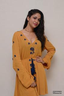 Lavanya Tripathi Stills at Srirastu Subhamastu Movie Trailer Launch