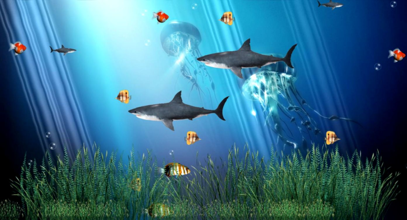 Download Coral Reef Aquarium Animated Wallpaper