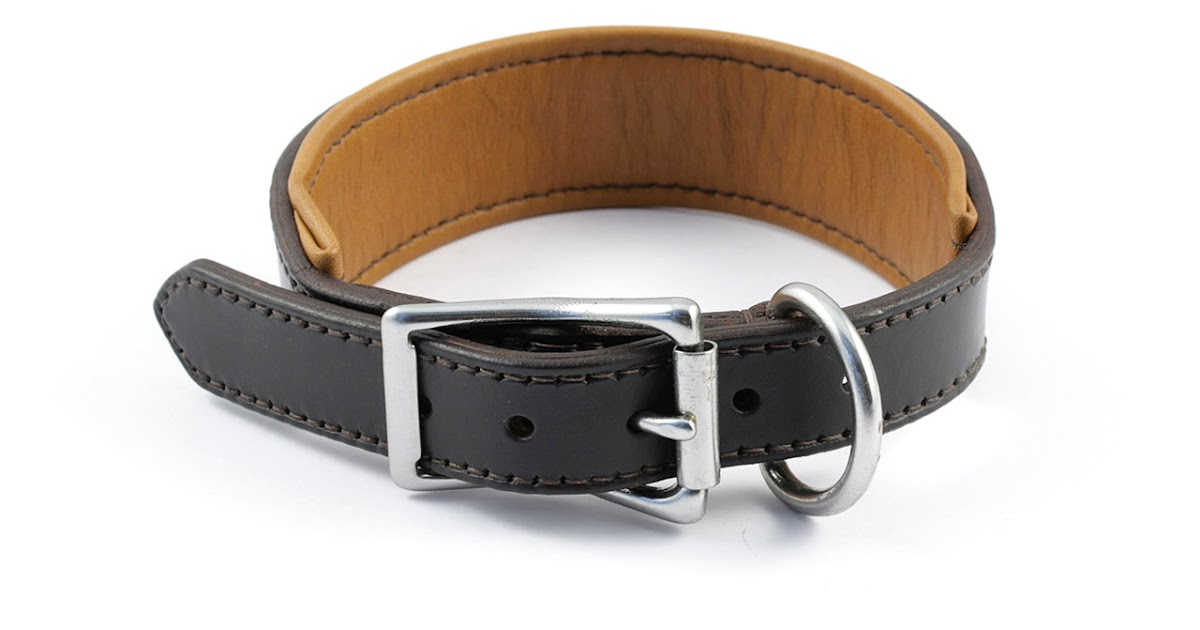 Leather Dog Collar With Name Engraved