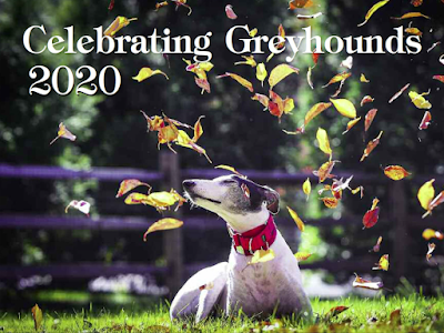 Celebrating Greyhounds 2020 calendar, with a photo of greyhound outdoors