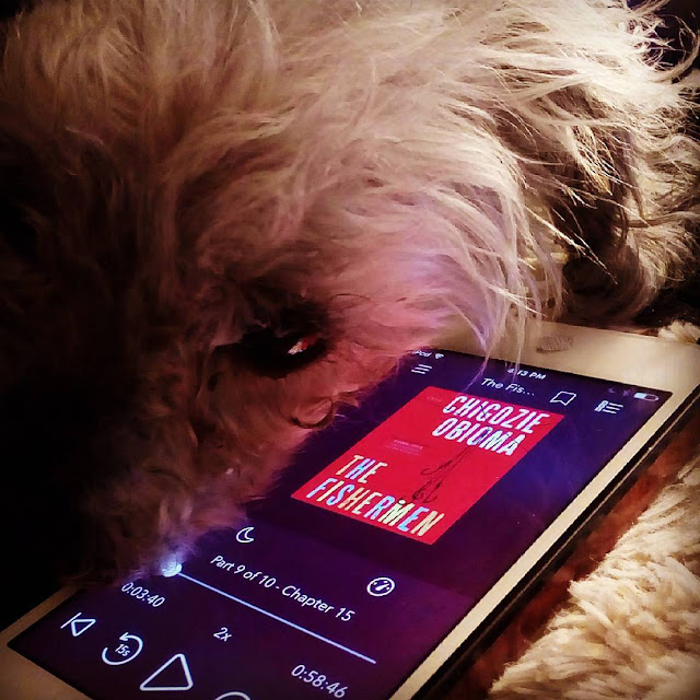 Murchie rests his fuzzy cheek against a white iPod with the red cover of The Fishermen on its screen.