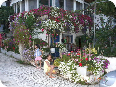 case pline de flori