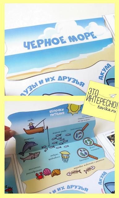 """Фрагмент лэпбука """"Морские жители"""""""