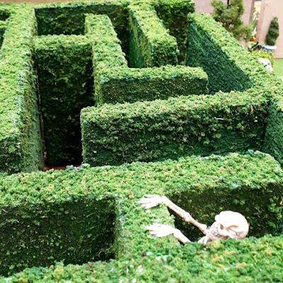 One-twelfth scale miniature garden maze with a skeleton inside