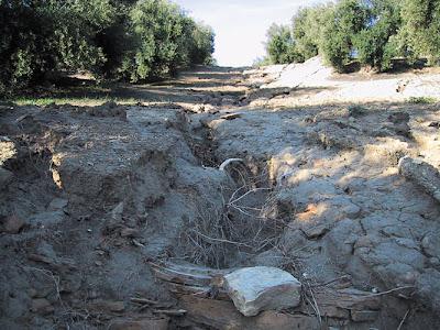 Problemas de erosión