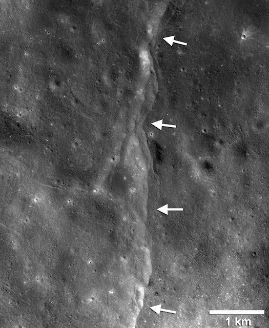 Thousands of young, lobate thrust fault scarps have been revealed in Reconnaissance Orbiter Camera images (LROC). Lobate scarps like the one shown here are like stair-steps in the landscape formed when crustal materials are pushed together, break and are thrust upward along a fault forming a cliff. Cooling of the still hot lunar interior is causing the Moon to shrink, but the pattern of orientations of the scarps indicate that tidal forces are contributing to the formation of the young faults. Credits: NASA/LRO