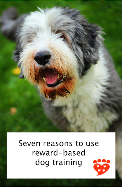 Reasons to use positive reinforcement in dog training