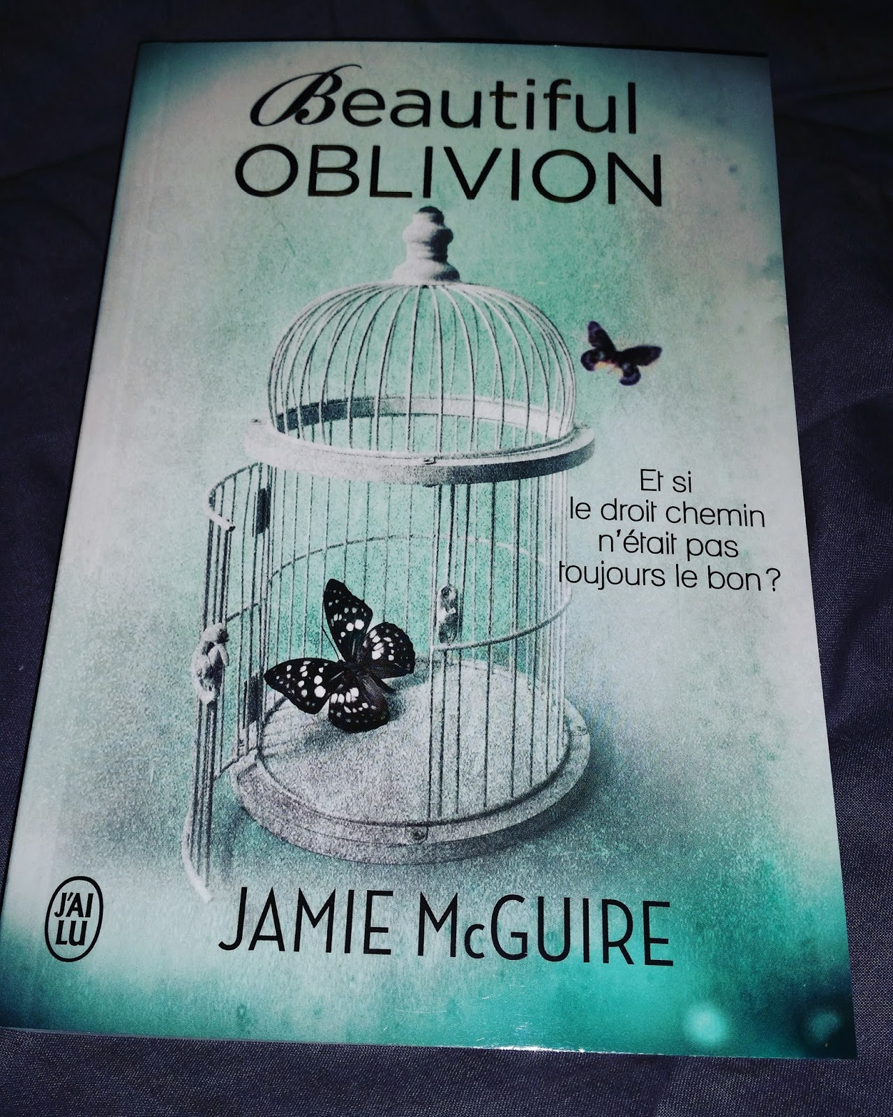 beautiful oblivion jamie mcguire pdf
