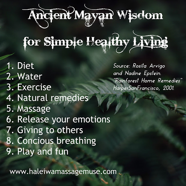 Lush, green, tropical ferns display ancient Mayan wisdom for health.