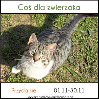http://art-piaskownica.blogspot.com/2015/11/przyda-sie-cos-dla-zwierzaka.html