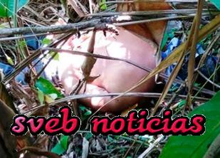 Hallan un ejecutado con señas de tortura en Ixhuatlán de Madero Veracruz