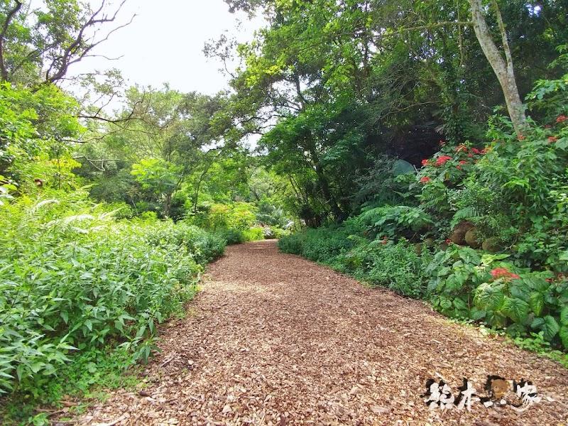 蝴蝶生態區步道|飛牛牧場~唯美自然系IG景點