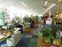 Alternativas para cuidar el medio ambiente una oficina verde for Oficina de medio ambiente