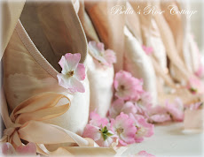 Ballerina Rose & Toe Shoes...