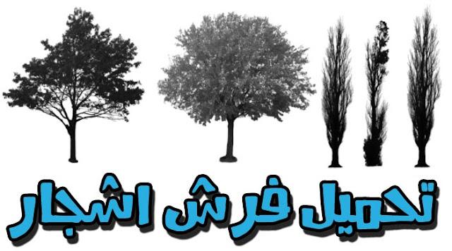 تحميل فرش اشجار للفوتوشوب