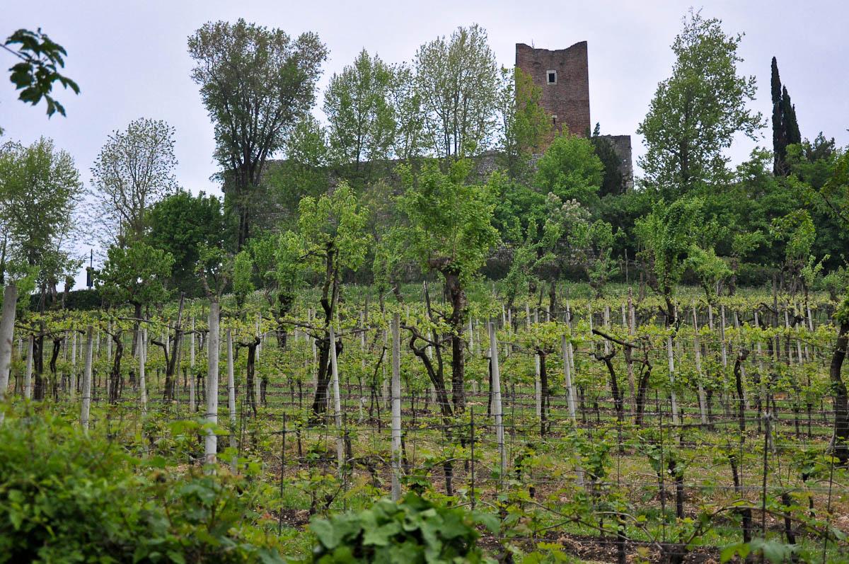 Juliet's Castle, Romeo and Juliet Festival - Faida, Montecchio Maggiore, Veneto, Italy
