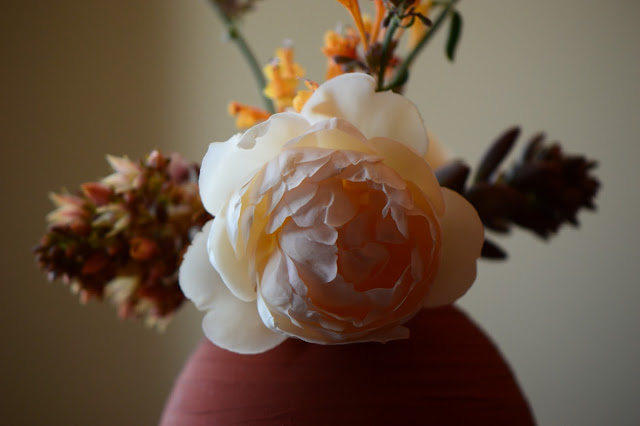 Monday Vase meme, rose Wollerton Old Hall, English rose