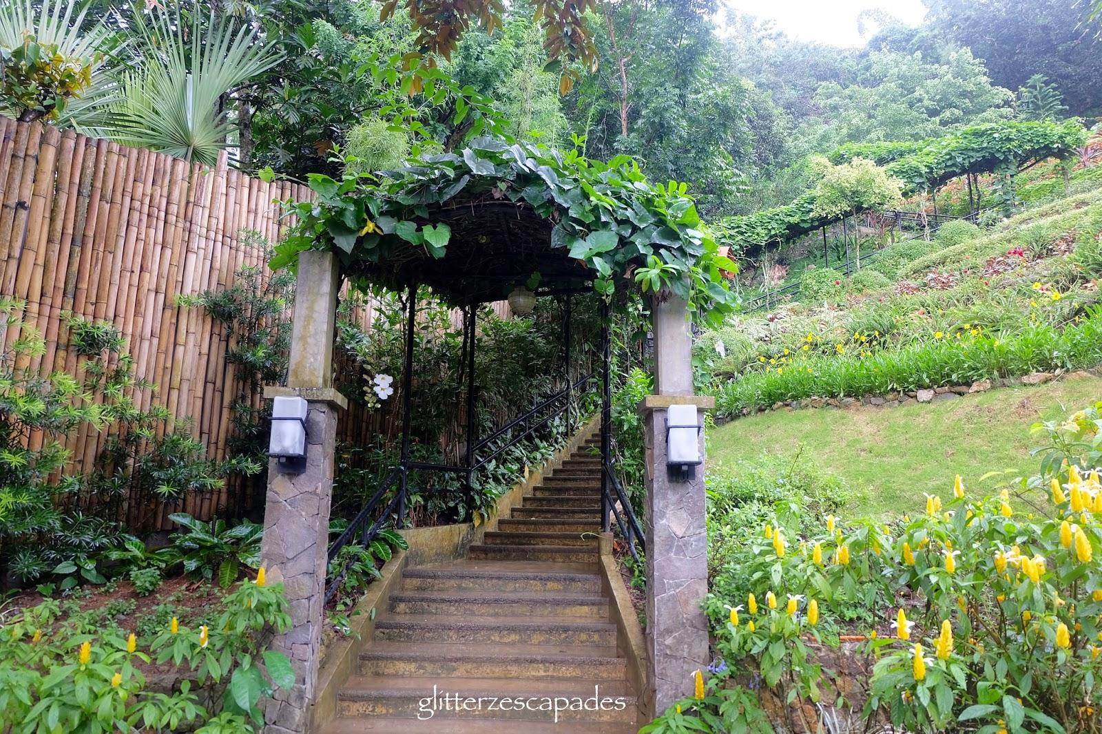 Terrazas De Flores Cebu Glitterz Escapades