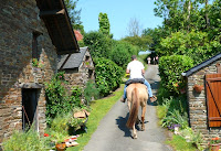 Poney en Normandie