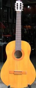 Đàn Guitar classic Sol.G SC101N