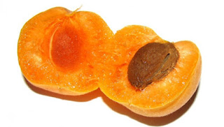 Rich Benefits Apricot, but beware for Toddlers