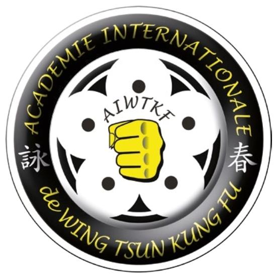Passion Wing Chun Systemes De Graduation Au Sein De L Academie