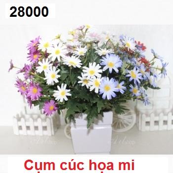 Phu kien hoa pha le tai Bien Giang
