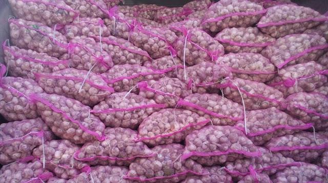 Stok Banyak, Kalau Harga Bawang Putih Tidak Wajar Importir Harus Tanggung Jawab