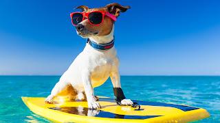 beneficios sicológicos de las vacaciones