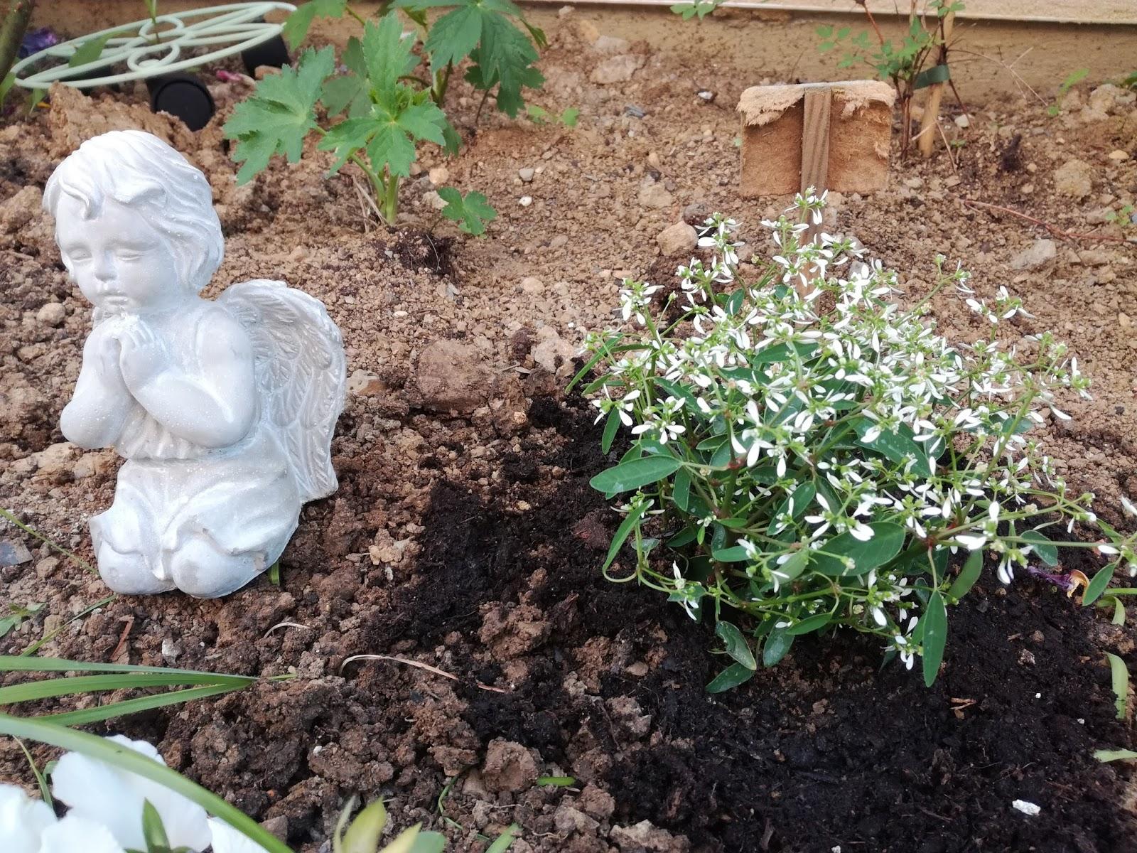 Petit jardin mosellan by caro un petit tour au jardin for Agrementer un jardin