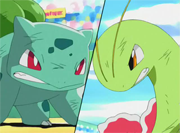 Bulbasaur vs Meganium