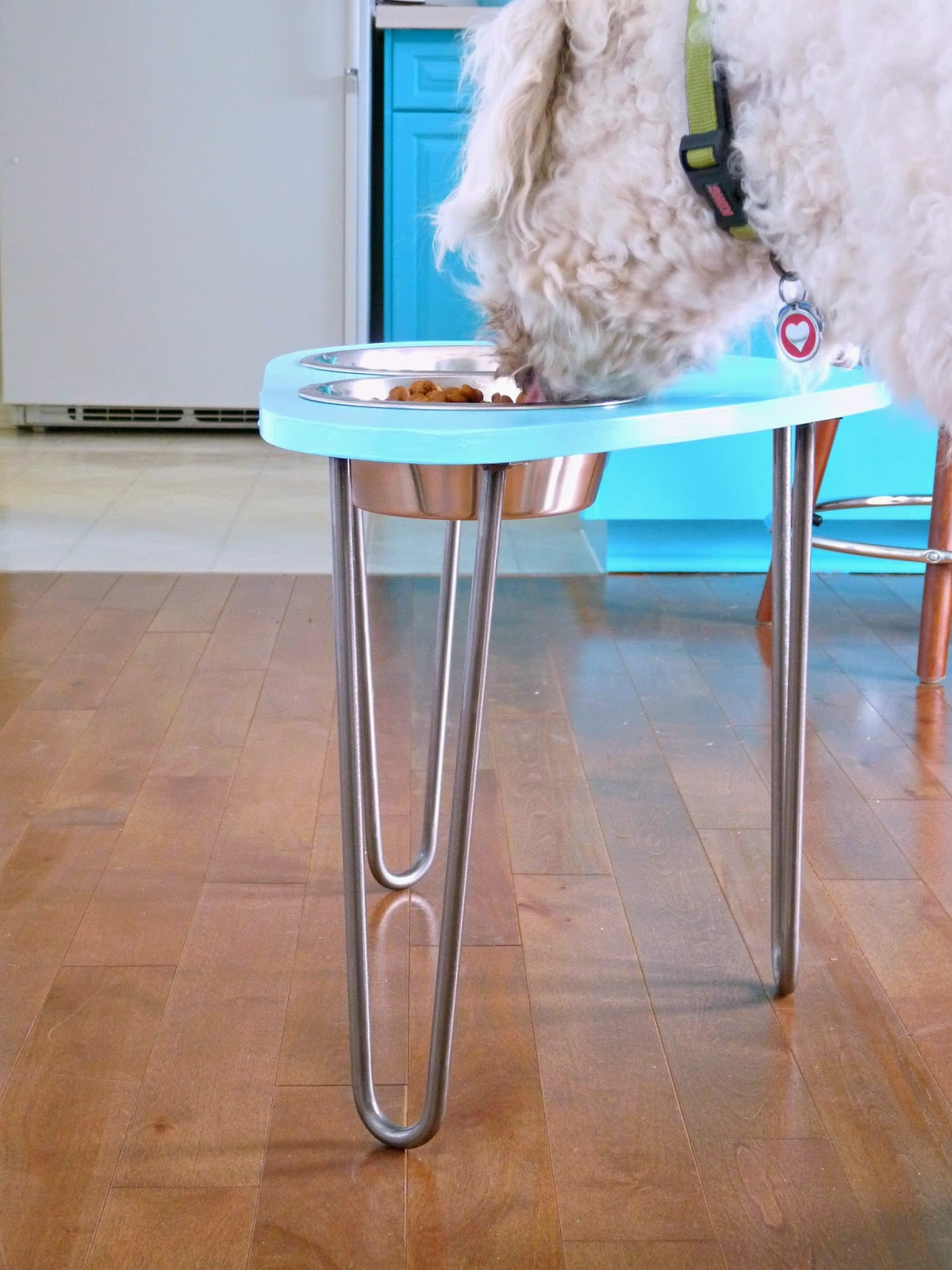 Turquoise Dog Bowl Stand
