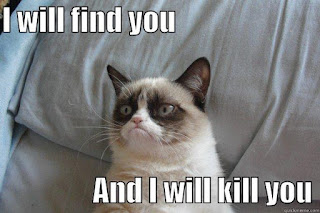 grumpy cat - I will find you and I will kill you meme