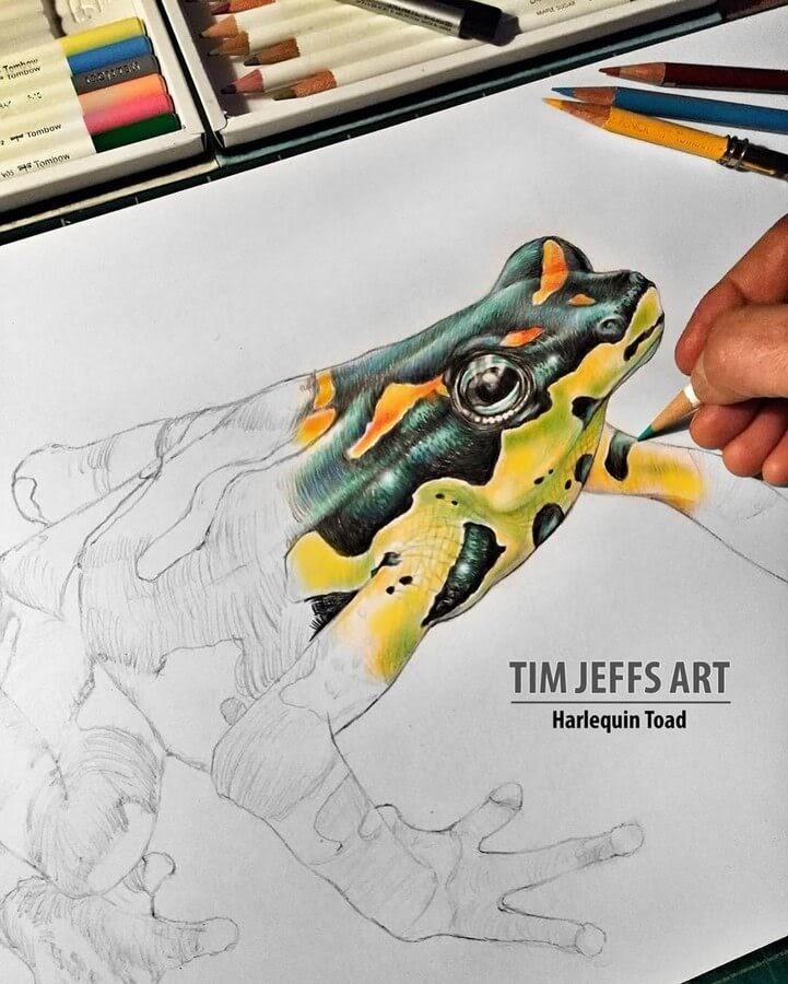 07-Toad-Tim-Jeffs-www-designstack-co