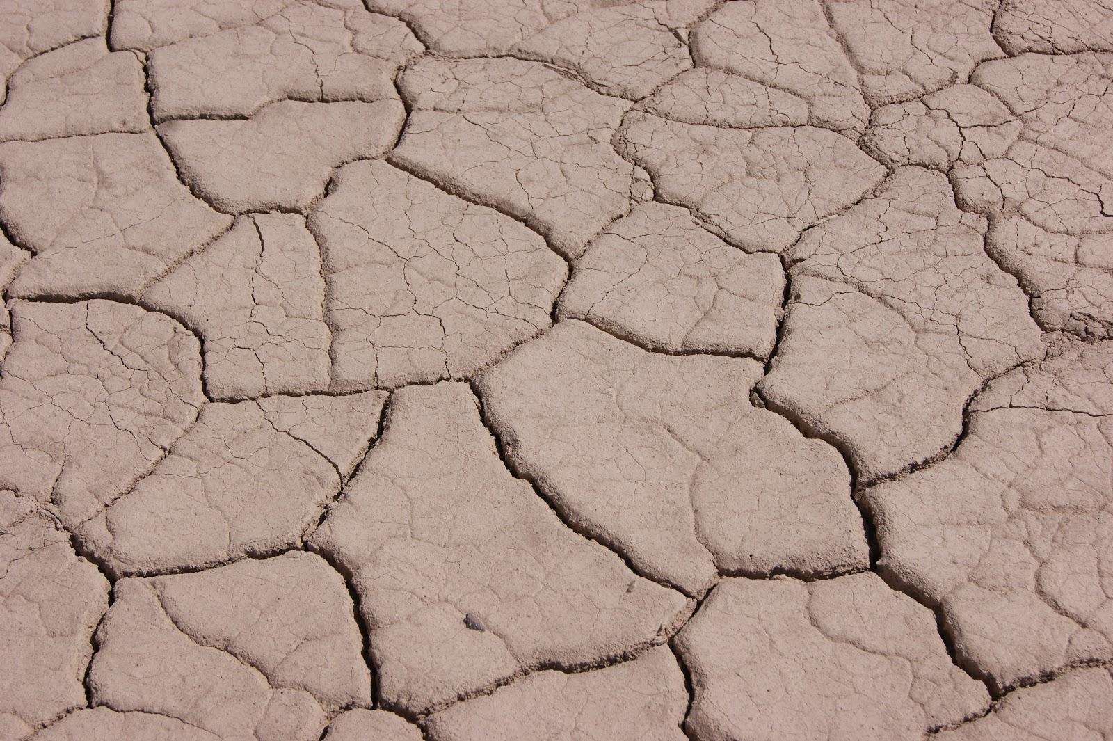 El moderno prometeo suelos componentes y horizontes for Suelo besar el suelo xd