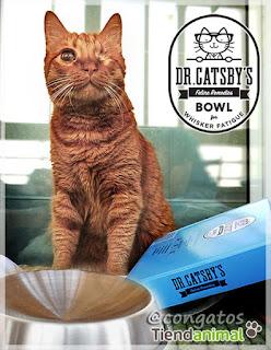 Gatera Rumbo Dr. Catsby Comedero Tiendanimal Elmo