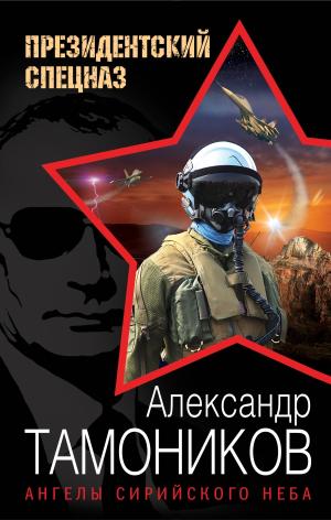 Александр Тамоников. Ангелы сирийского неба
