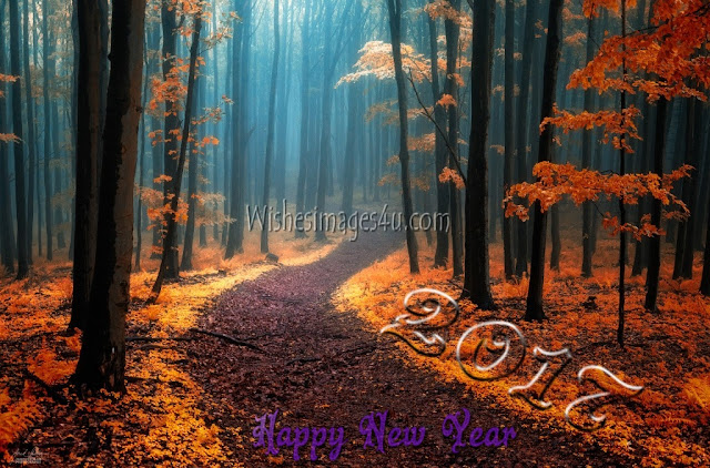 Happy New year 2017 Nature HD Images Download Free